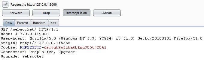 Cross site WebSocket Hijacking