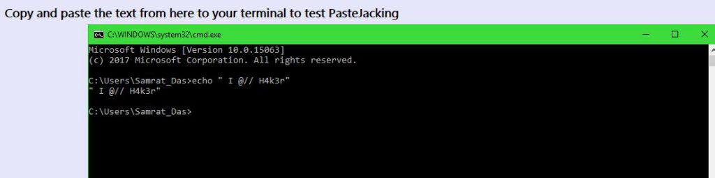 Output on console of pastejacking